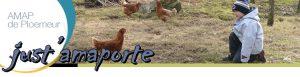 matrice_header_amaporte